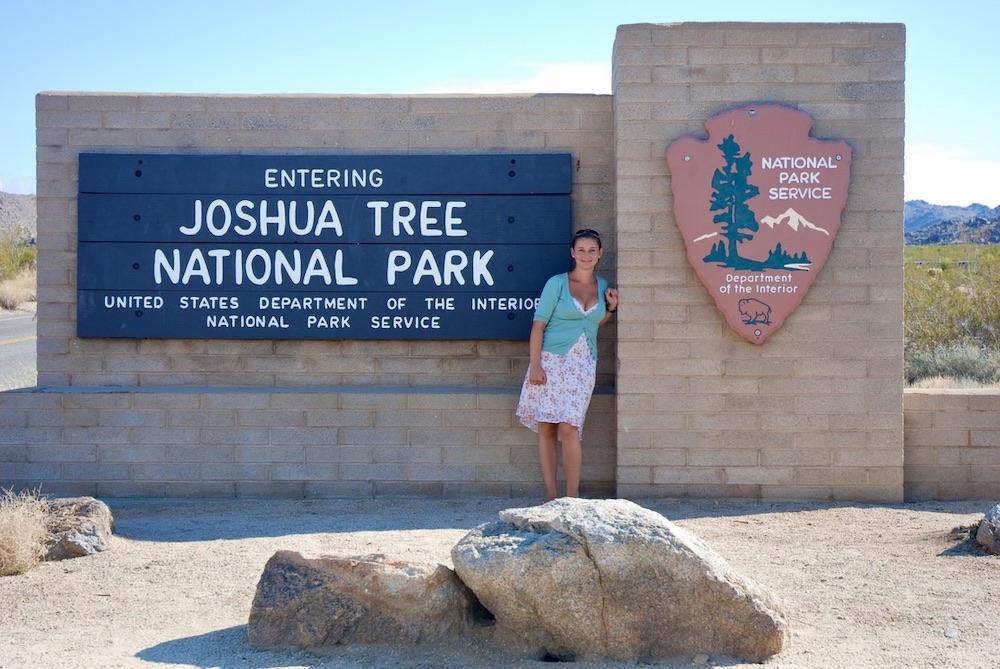 Voorbeeldroute rondreis West-Amerika - Joshua Tree NP