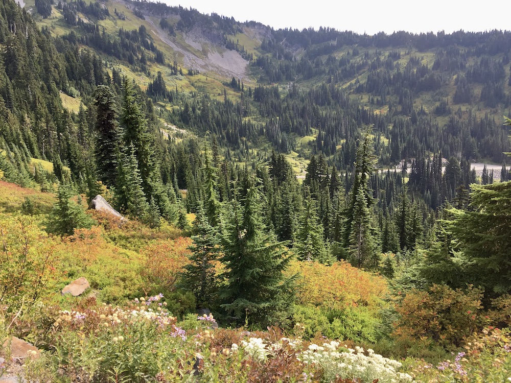 5 Highlights van Washington State - Mount Rainier