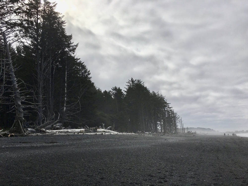 5 Highlights van Washington State - Rialto Beach